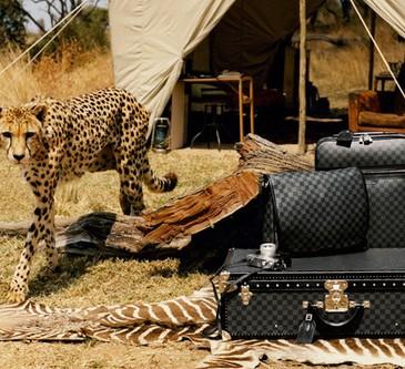louis-vuitton-africa-animal