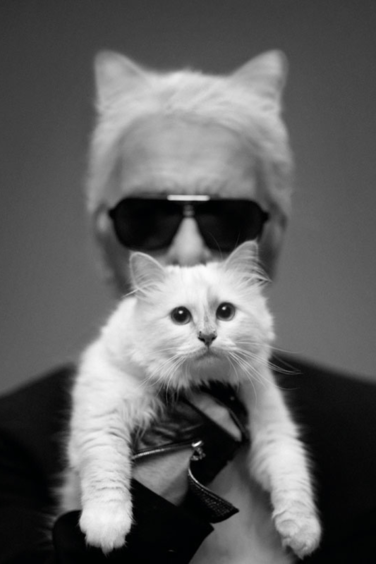 Magazine Karl Lagerfeld Choupette