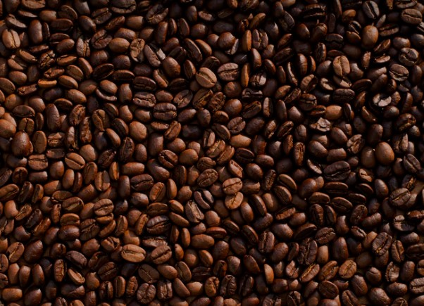 Coffee 'faces extinction due to climate change'