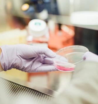 Superbug genes from India found in Arctic
