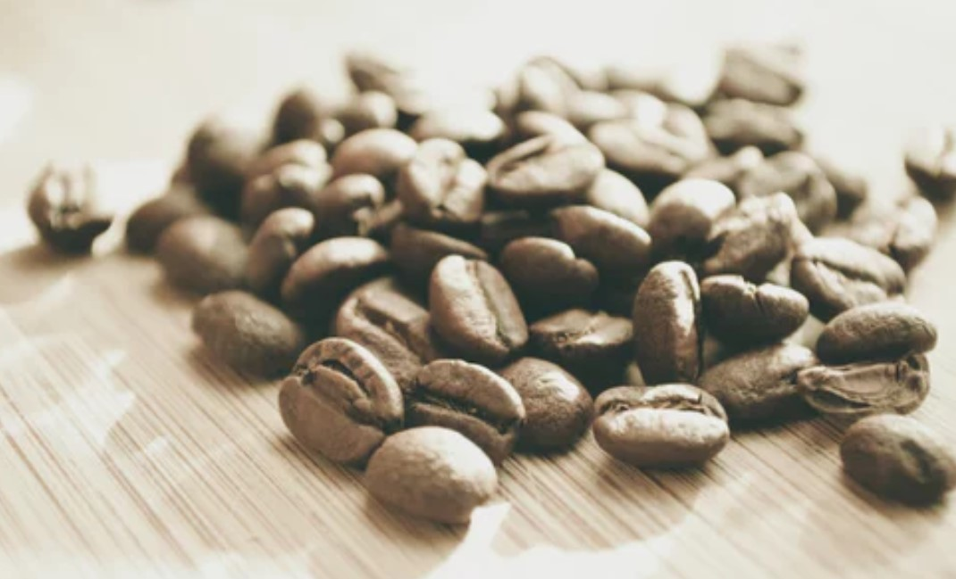 Wake Up! How Coffee Beans Can Fight Climate Change