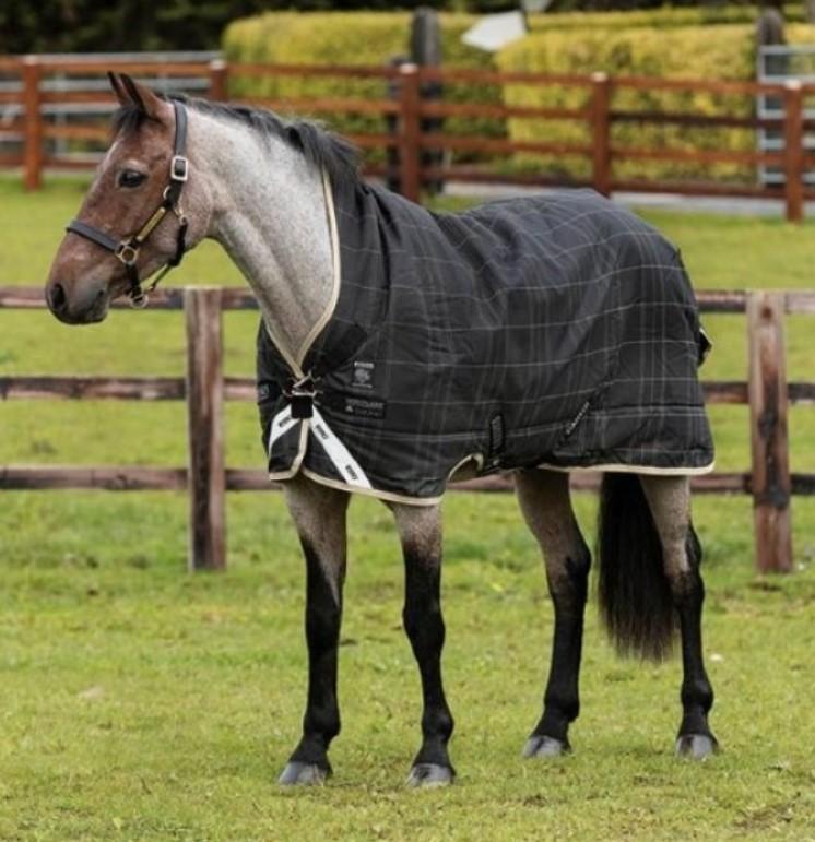 Rhino® Wug Pony (200g Medium)